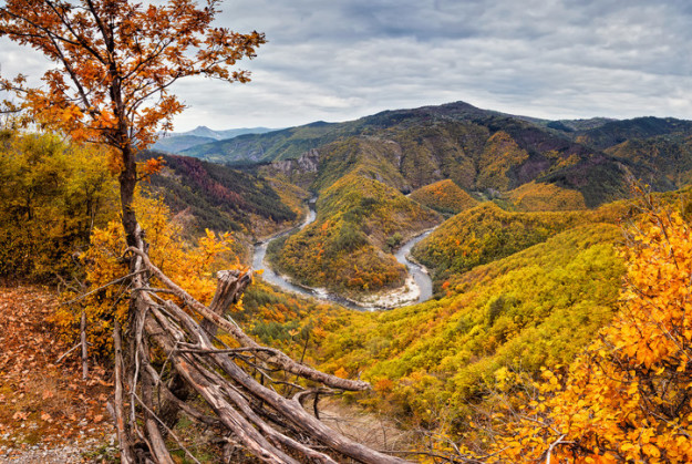 arda-river
