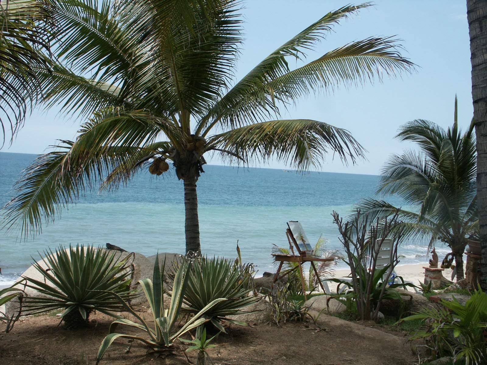 Sayulita - Αυτό είναι το ιδανικό μέρος να πας διακοπές φέτος το καλοκαίρι, με βάση το ζώδιό σου!